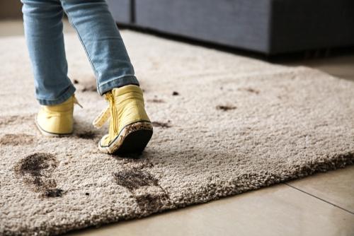 عوارض وحشتناک پاکیزه نبودن فرش ها بر سلامت بدن
