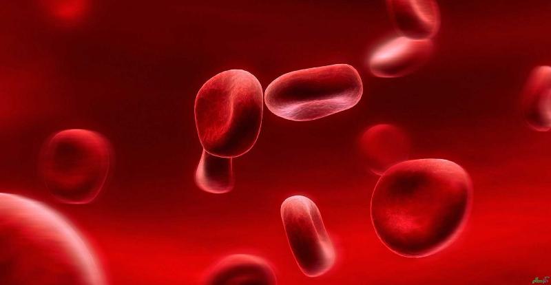 برای کم خونی چه بخوریم؟