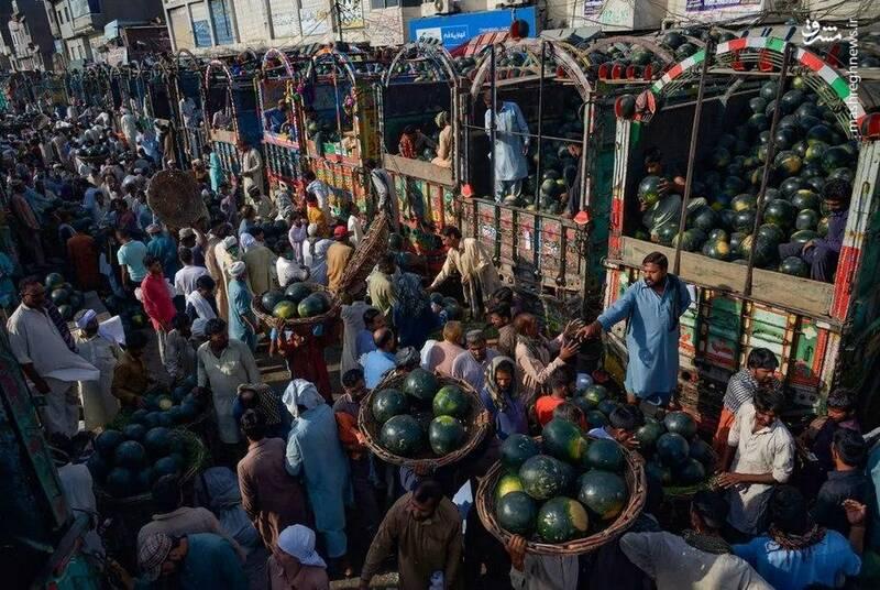 بازار هندوانه فروشان+عکس