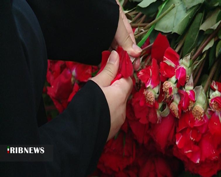 ماجرای یک میلیون گل رُزی که به عنوان مهریه پرداخت شد+عکس
