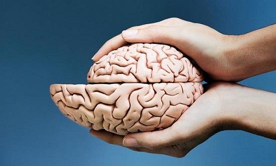 وقتی مغز کوچک میشود