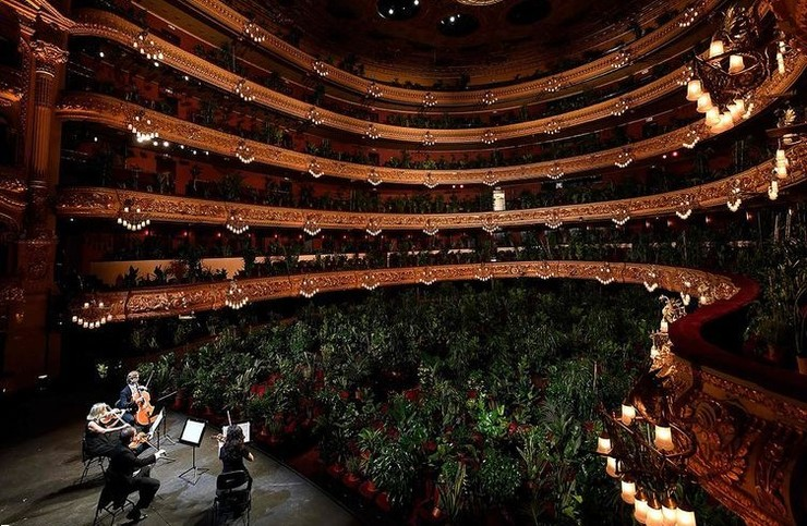 کنسرت برای ۳۰۰۰ گلدان +عکس
