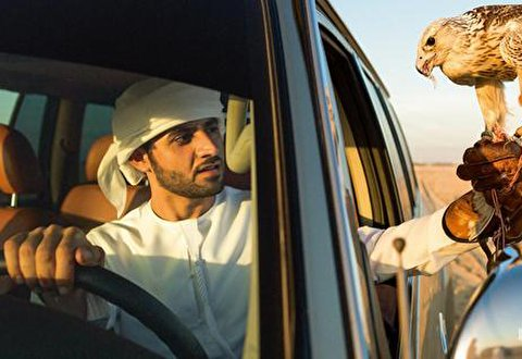 حصار کشی ولیعهد دبی دور ماشین گرانقیمتش برای دو پرنده!