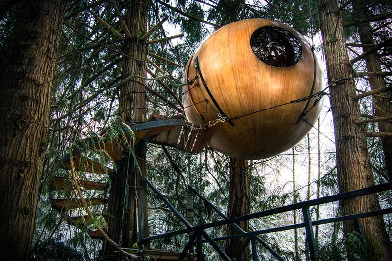 هتل درختی؛ اقامتگاهی که شاید تا کنون ندیده باشید