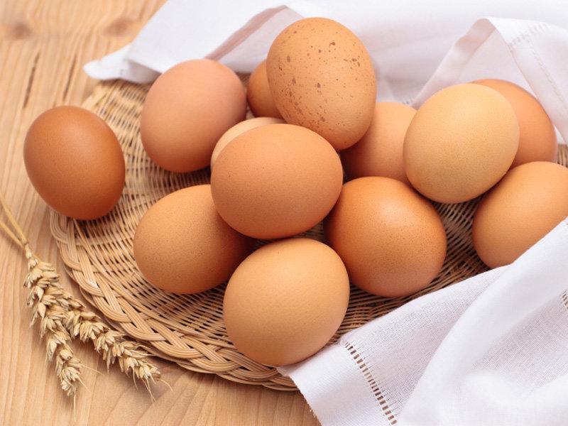 تخم مرغ و مرغ محلی نخورید