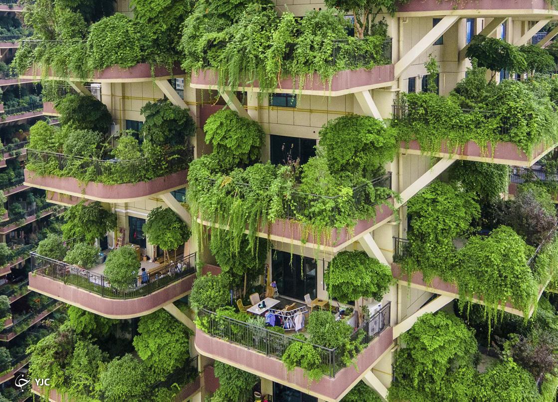 نمای جنگلی در بالکن آپارتمان های لوکس+عکس