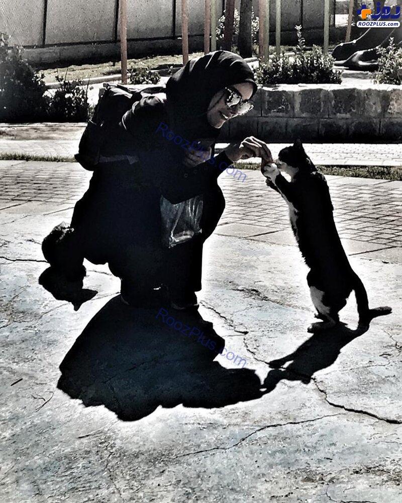 متین ستوده درحال غذا دادن به گربه+عکس