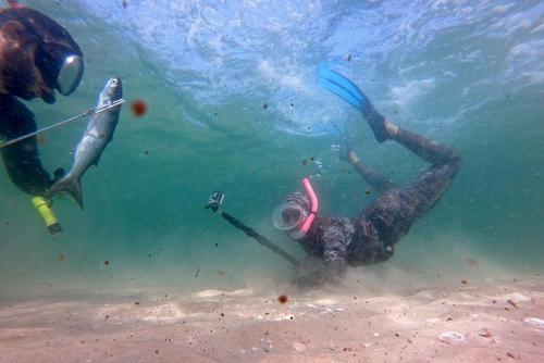 تصویری جالب از ماهیگیری با نیزه در ساحل باریکه غزه + عکس
