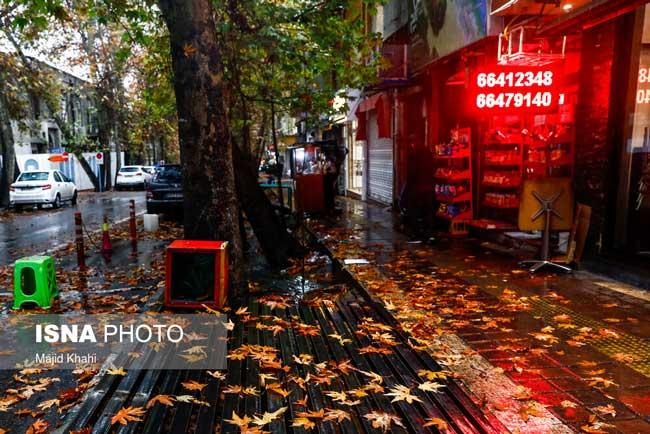تصویری متفاوت از آخرین روزهای پاییز در تهران