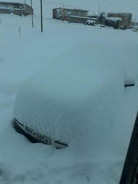 بارش برف سنگین در کردستان +عکس