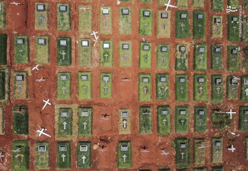 قبرستان قربانیان کرونا را از بالا ببینید