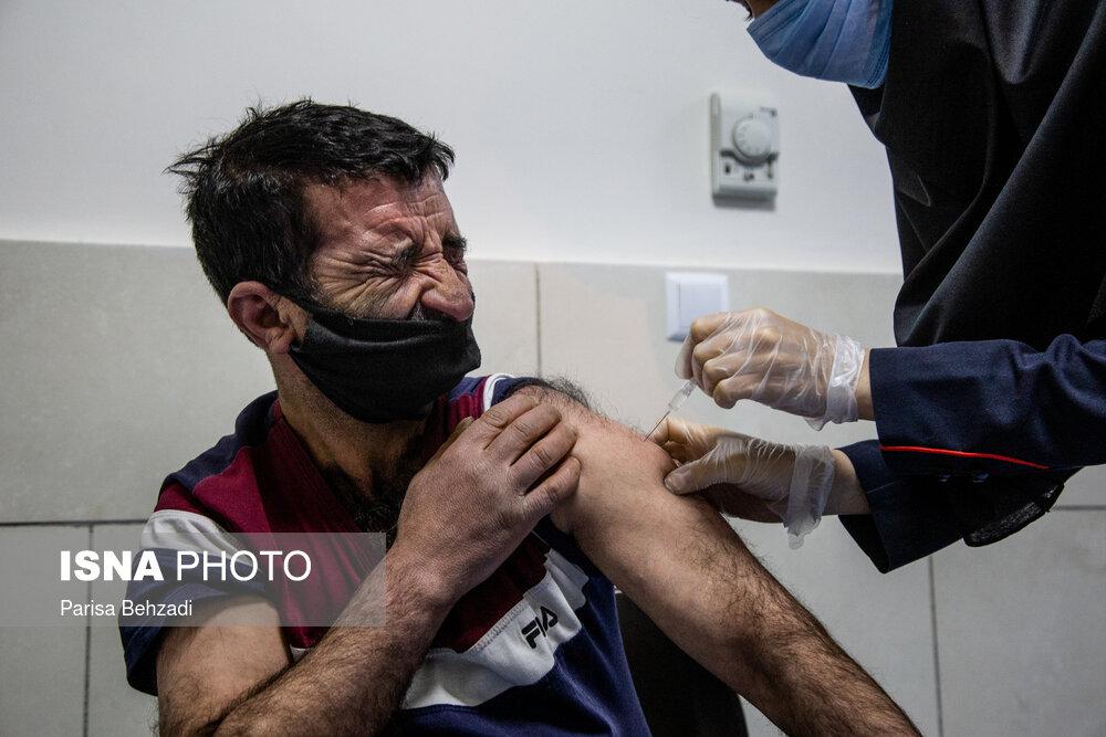 واکنش جالب پاکبان اراکی به واکسن کرونا + عکس
