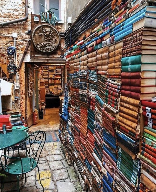 کتابخانه ای رویایی در ونیز + عکس
