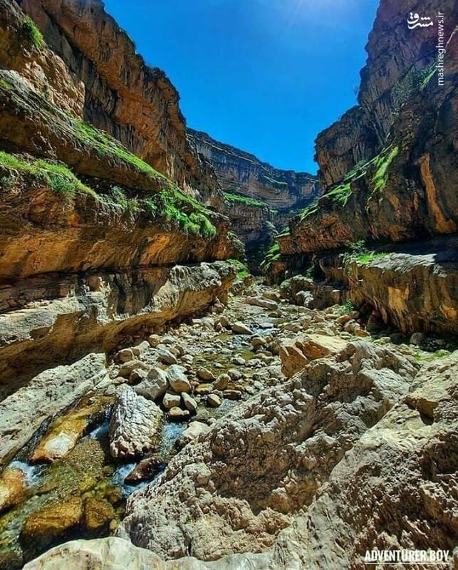 دره های زیبا و طبیعت بکر دره زید+ عکس