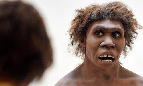 انسانهای اولیه با نئاندرتالها رابطه جنسی داشتند!