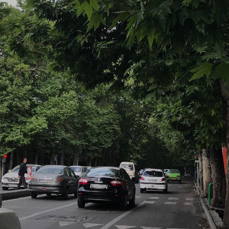 منظره زیبای یکی از خیابان های تهران + عکس
