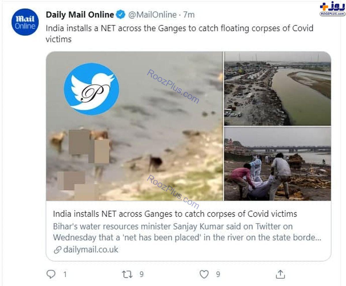 نصب تور روی رودخانه هند برای گرفتن اجساد کرونایی+عکس