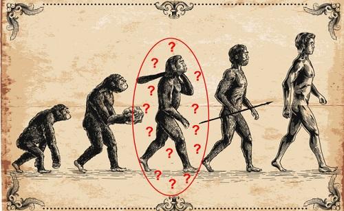 محققان: اجداد انسان، میمونها نیستند