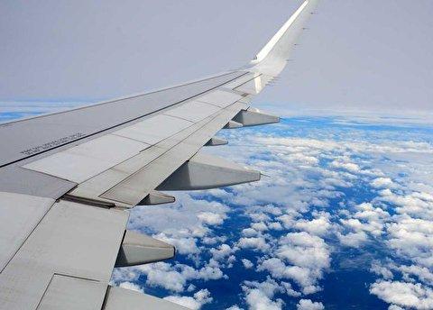 تصویری جالب از تلاش پرنده برای نشستن روی بال هواپیما