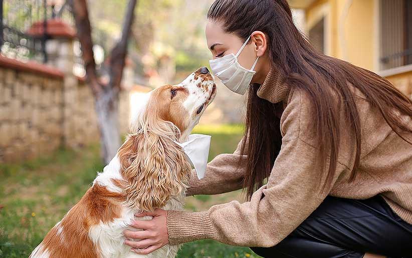 برقراری ارتباط سگ با انسان وراثتی است، نه اکتسابی
