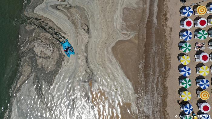 جلبکهای چسبنده در سواحل ترکیه