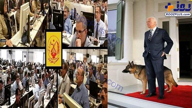 مرگ سگ بایدن و ارتباط آن با گروهک منافقین!