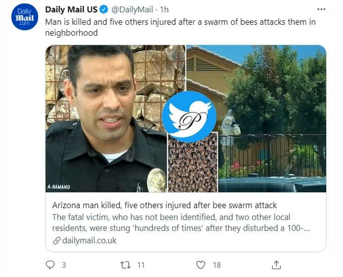 انتقام زنبورها جان یک مرد را گرفت + عکس