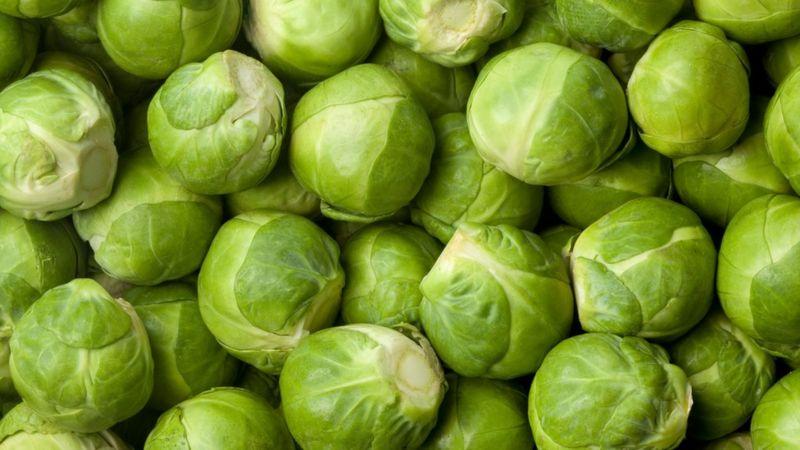 آیا بیمیلی به سبزیجات عامل ژنتیکی دارد؟