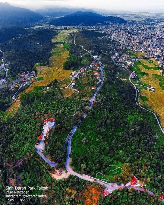 اینجا پارک جنگلی سیاه داران است، سوئیس ایران + عکس