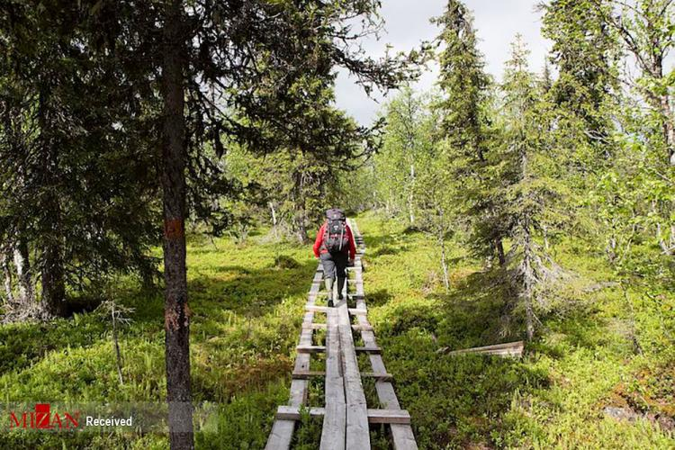 پارکهای ملی سوئد