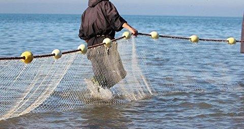 روشی عجیب برای گرفتن ماهی در تایوان