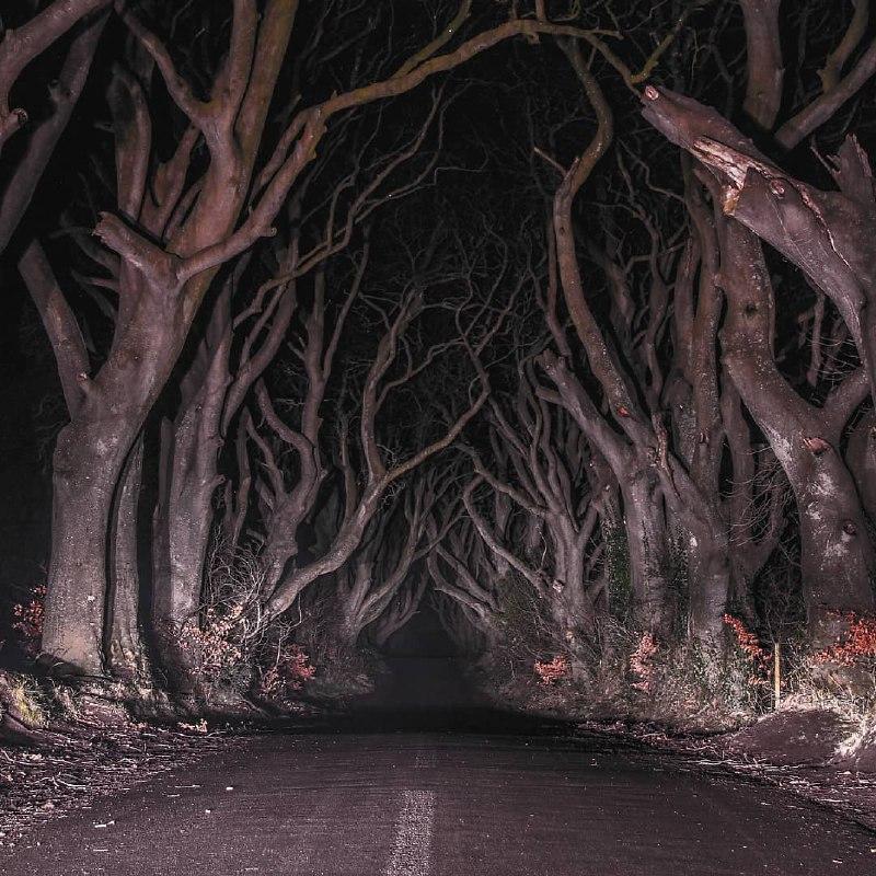 جاده وحشت در ایرلند شمالی + عکس