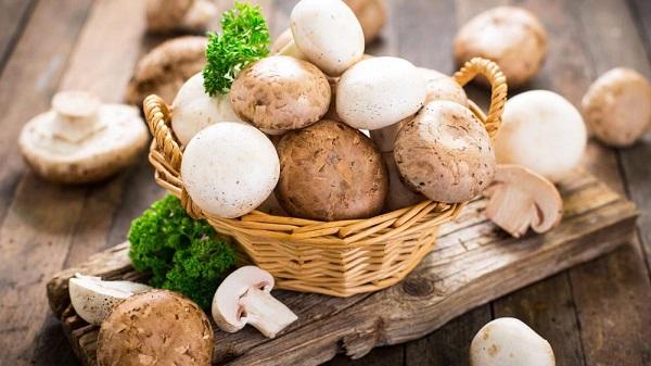 قارچی که مصرفش از اسکیزوفرنی و افسردگی جلوگیری می کند
