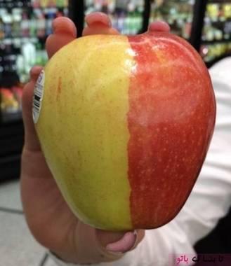 سیب دو رنگ قرمز و زرد