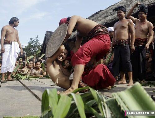 اندونزی: کشتی سالانه با یکدیگر در بالی اندونزی و با استفاده از گیاهان برگ خنجری پاندانوس
