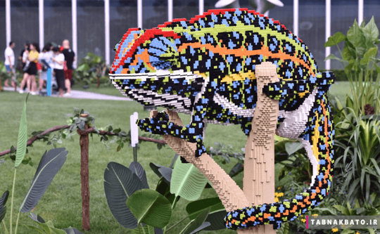 چین: آفتاب پرست ساخته شده از لگو در جشنواره ی ملی لوگوی چین در چنگدو