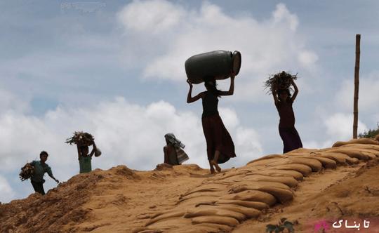 بنگلادش: دختران مسلمان روهینگیایی در حال حمل هیزم در اردوگاه پناهندگان کوتوبالونگ