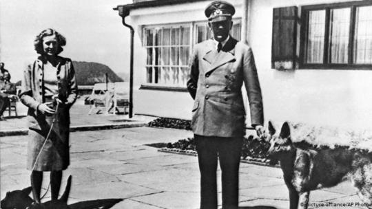 در دوران رژیم نازیها، سگ ژرمن شپرد تبدیل به یکی از نمادهای