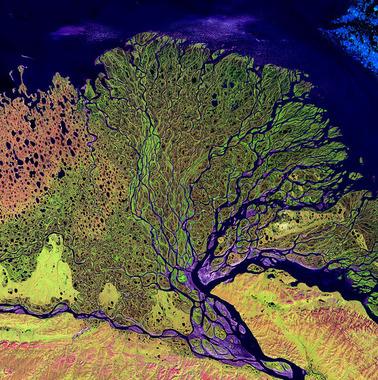 دلتای رود لنا در سیبری