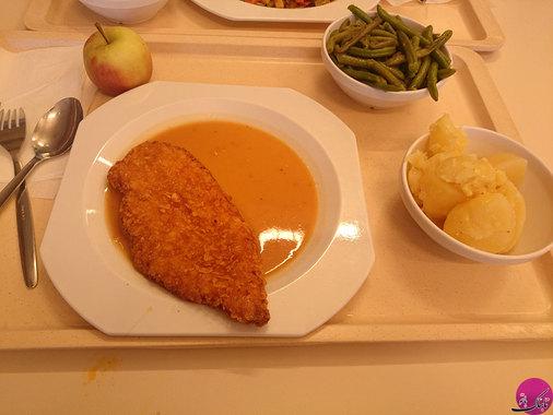 فرزانه نیکجو: غذای دانشجویی؛ کشور آلمان، دانشگاه گوتتینگن.