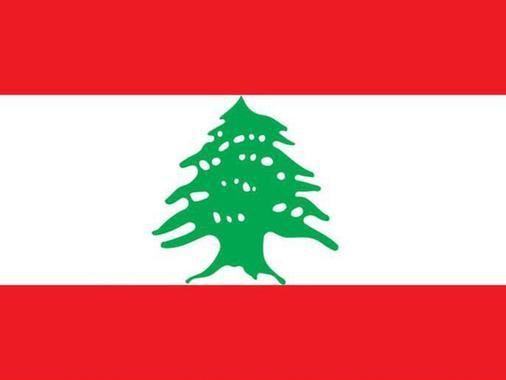 در پرچم لبنان دو نوار قرمز در بالا و پایین پرچم نشانه خون هایی است که در جنگ رهایی بخش ریخته شده است. سفید نشانه صلح و کوههای برفی است و درخت سبز صدر- که سمبل ملی است- نشان از جاودانگی دارد.