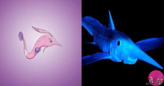 ماهی بينی دراز