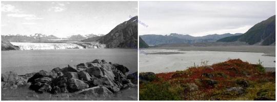 یخچال کارول، آلاسکا، اوت ۱۹۰۶ و سپتامبر ۲۰۰۳ میلادی