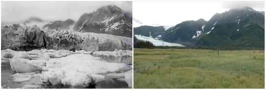 یخچال پدرسن، آلاسکا، تابستان ۱۹۱۷ و تابستان ۲۰۰۵ میلادی