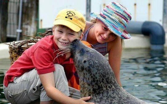 تجربه دوستی کودکان با حیوانات در سفرهای علمی _ تفریحی