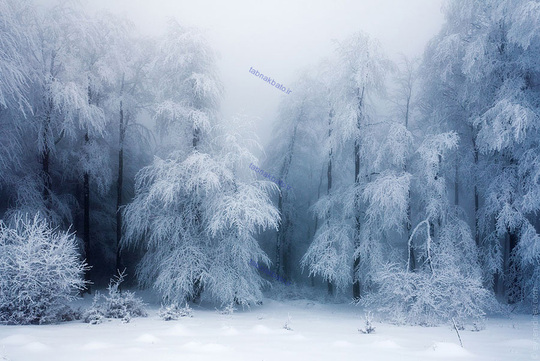 مناظر زمستانی