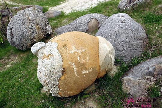سنگ های عجیبی که رشد می کنند