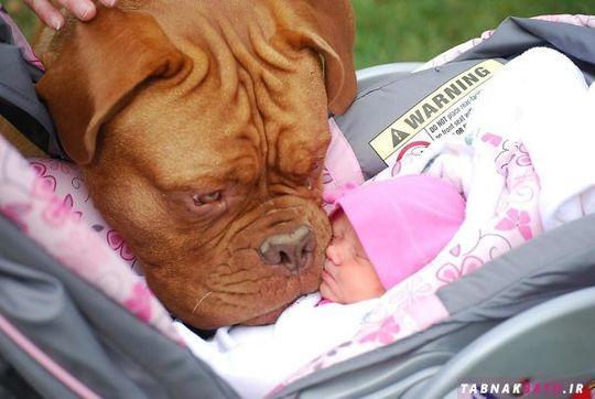 وقتی برای اولین بار نوزاد انسان می بیند
