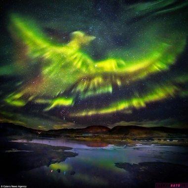شفق قطب شمال، ایسلند، شبیه ققنوس به نظر می رسد
