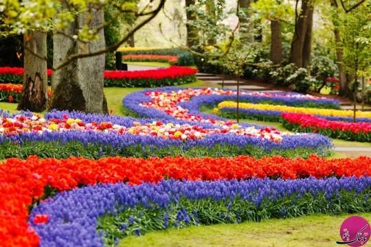 باغ گیاهان، کیو کن هوف، هلند